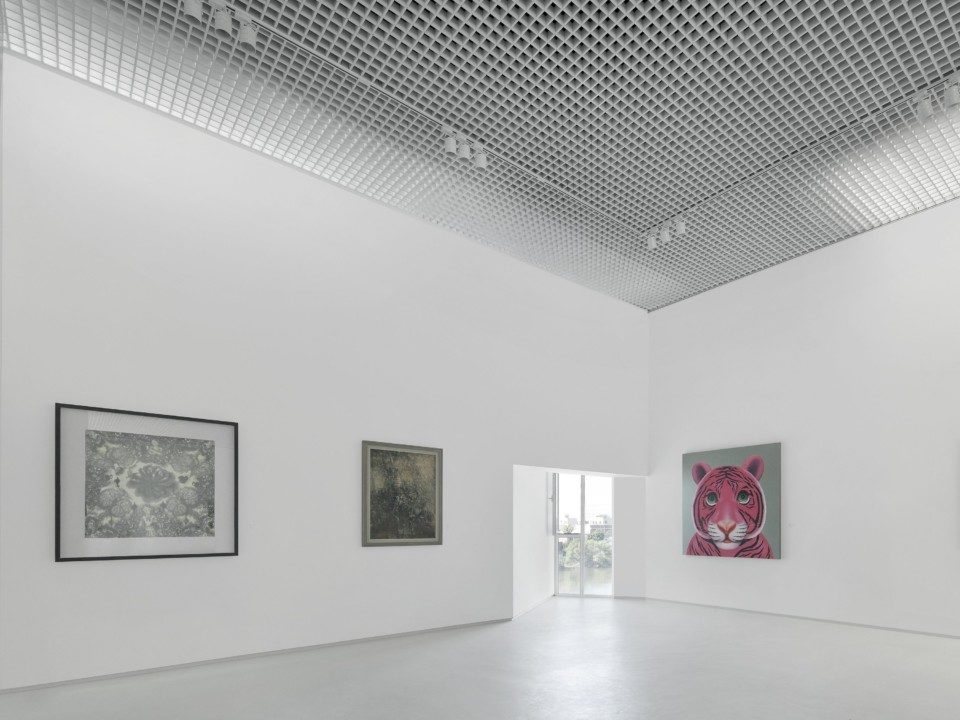 ring Art Museum_Interior View 5