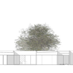Courtyards House _Cross Section