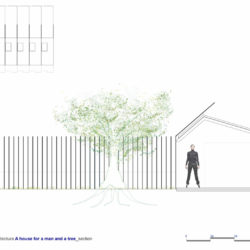 Man and a tree_Plan_1