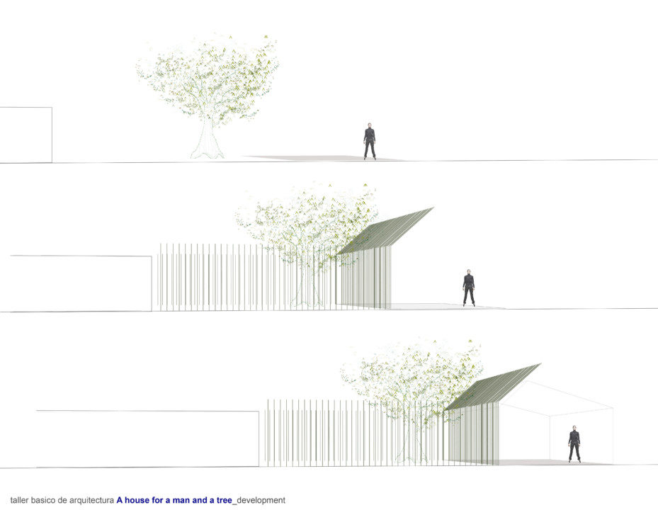 Man and a tree_Plan_2