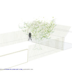 Man and a tree_Plan_3