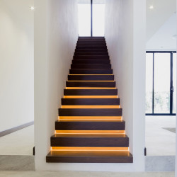 Pedregal House Treppe 2