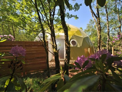 Ecopod Boutique Retreat
